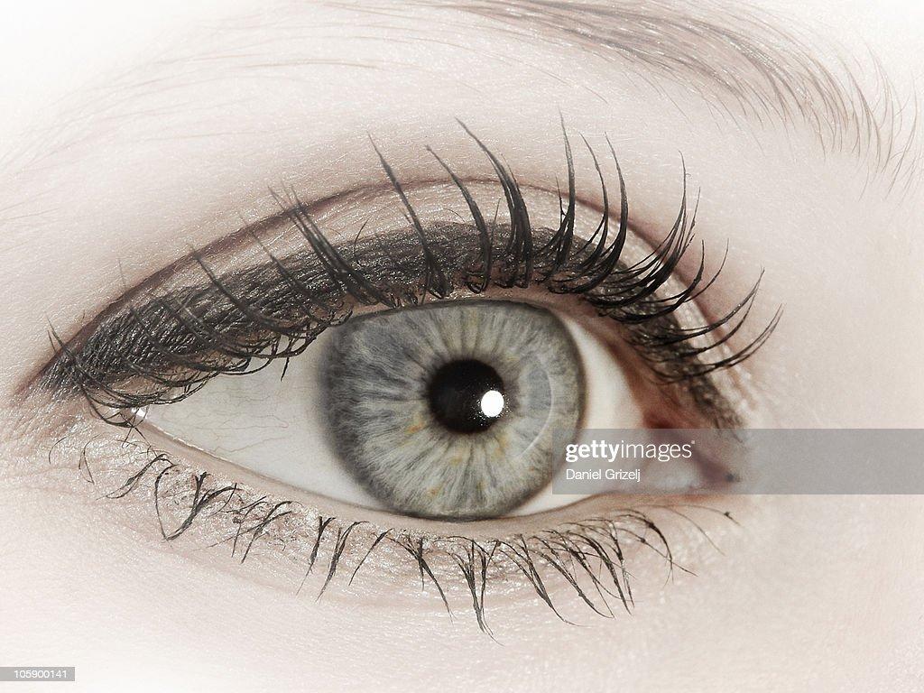 female eye : Stock Photo