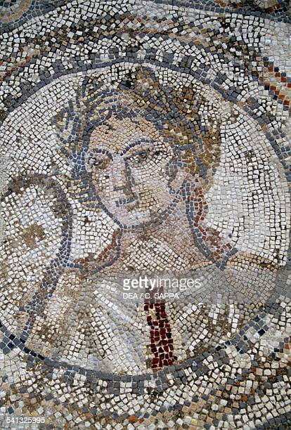 Female face mosaic in the Roman city of Volubilis Morocco Roman civilisation 2nd3rd century