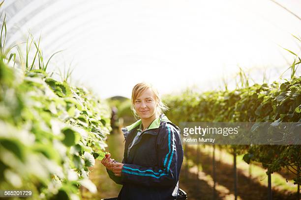 a female farm worker smiles whilst picking fruit - agriculture stock pictures, royalty-free photos & images