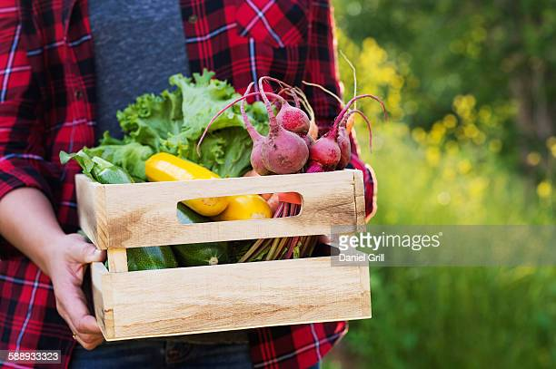 Female farmer carrying crate with vegetables
