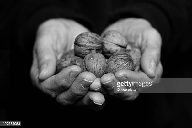 Female farmer holding organic walnuts
