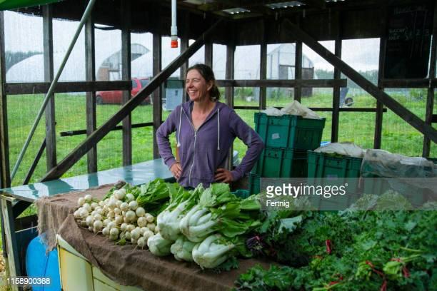 un fermier féminin vendant des légumes organiques à un stand de ferme - une seule femme d'âge mûr photos et images de collection