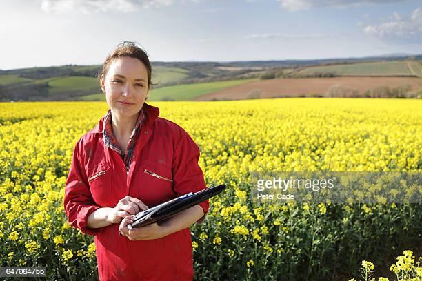 female farmer stood in oil seed rape field - brassica napus l - fotografias e filmes do acervo