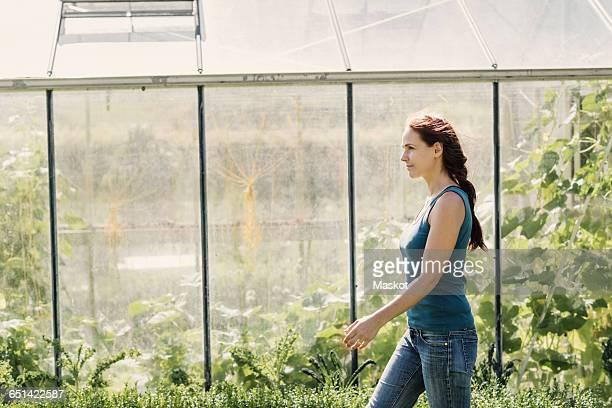 Female farmer walking against greenhouse on sunny day