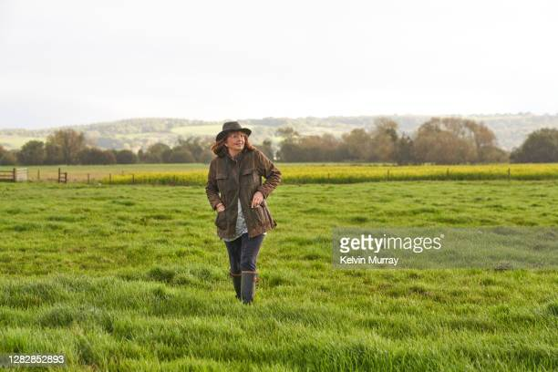 a female farmer who specialises in organic farming and a suckler herd - rural scene stock pictures, royalty-free photos & images