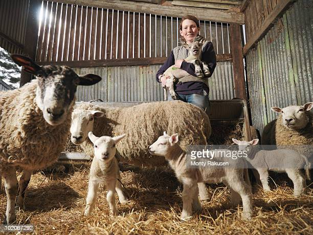 Female Farmer With Sheep & Lambs