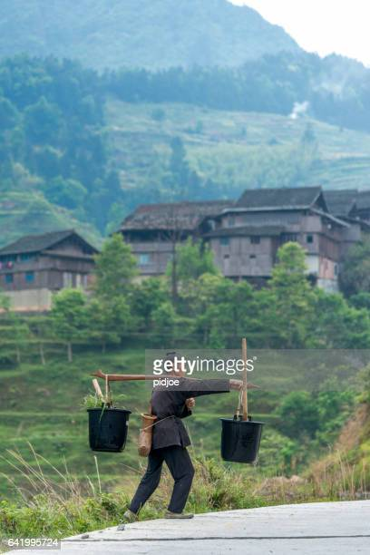 female farmer with shoulder yoke in field, shot in china - yoke stock photos and pictures