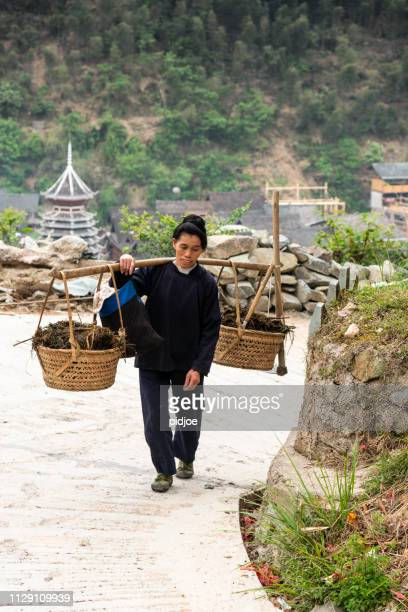 female farmer with yoke near huang gang, china - yoke stock photos and pictures