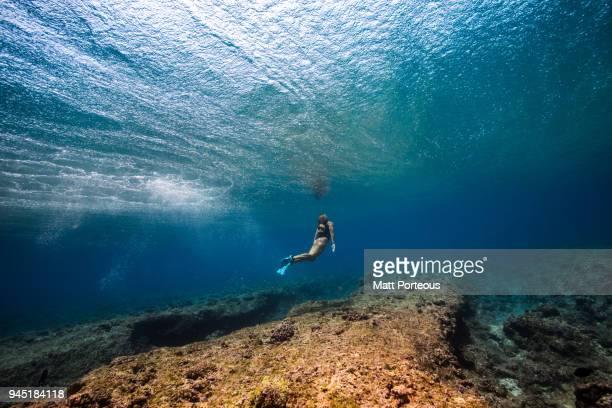 Female free diver
