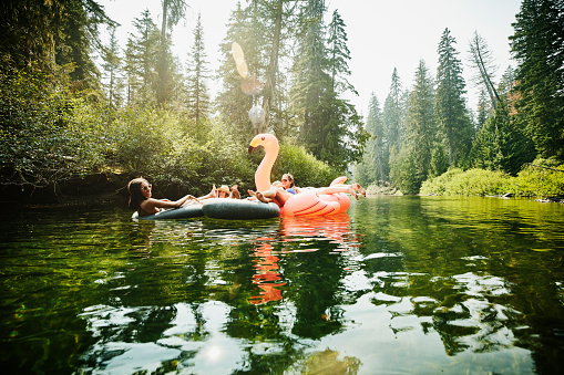 Female friends floating down river on inner tubes and pink flamingo on summer afternoon - gettyimageskorea