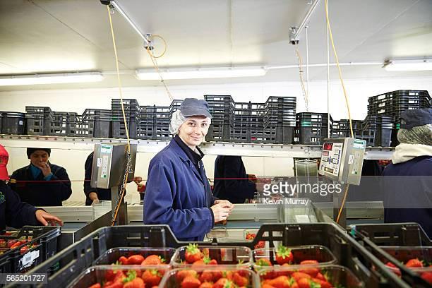 Female fruit packer smiles preparing strawberries
