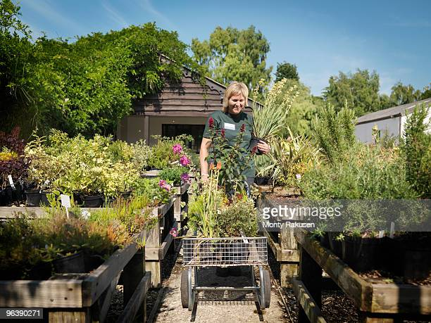 Female Garden Center Worker With Plants