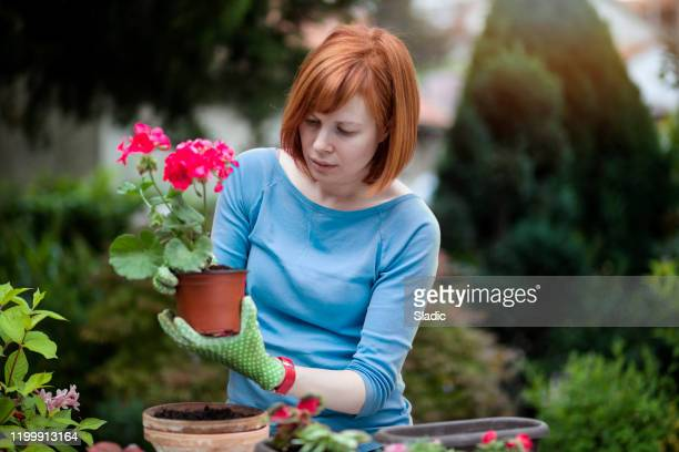 female gardener - embellishment stock pictures, royalty-free photos & images