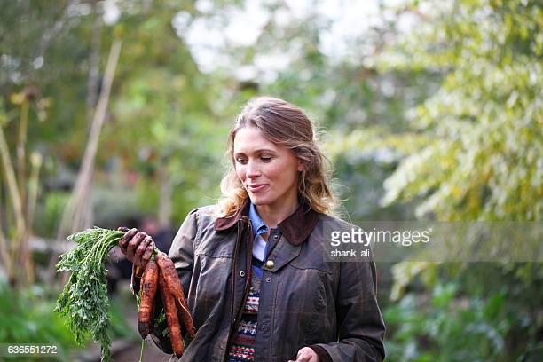 female gardener pulling up carrots