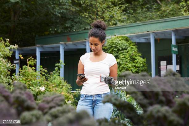female gardener using mobile phone amidst plants - green fingers stock pictures, royalty-free photos & images