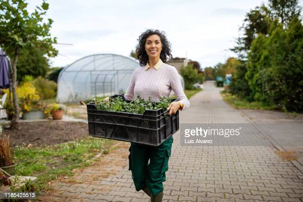 female gardener working at garden center - part of a series stock pictures, royalty-free photos & images