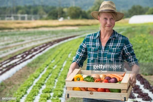 Female Gardner With Fresh Vegetable Box