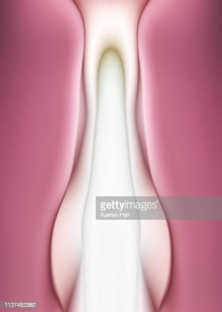 female genitals abstract design - clitoride foto e immagini stock