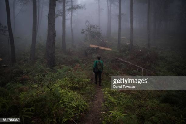 A female guerilla officer of the New People's Army walk amid heavy fog on April 2 2017 in the remote hinterlands of Mountain Province Philippines The...