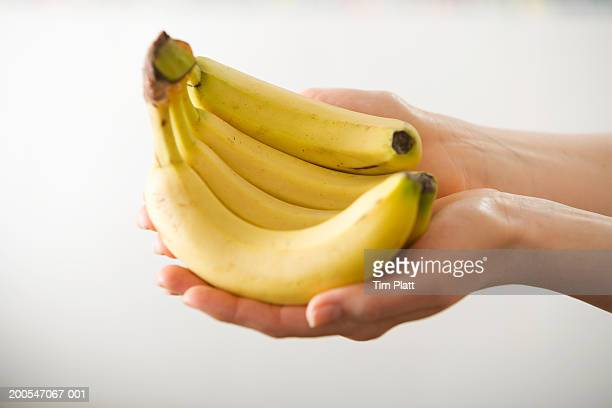 Female hand holding bunch of bananas, close-up