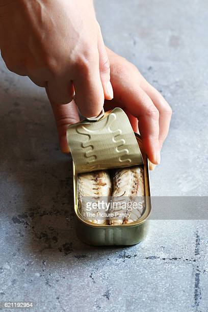 Female hand opening a can with mackerel fillet
