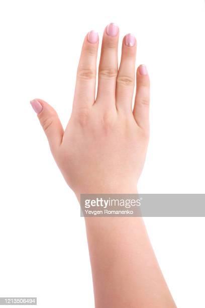 female hand with french manicure, isolated on white background - menschlicher arm stock-fotos und bilder