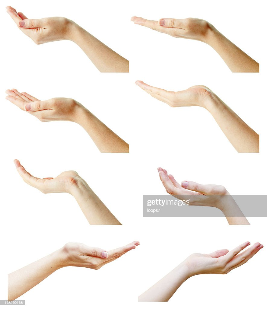 female hands collection : Stock Photo