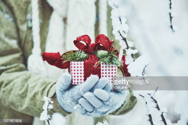 vrouwelijke handen met de gift van kerstmis in besneeuwde weer - handschoen stockfoto's en -beelden