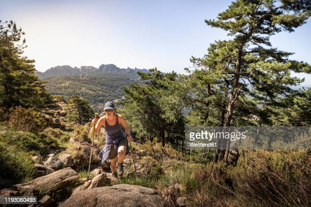 female hiker, aiguilles de bavella, corsica, france - corsica stock pictures, royalty-free photos & images