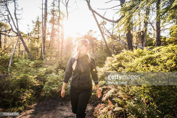Female hiker hiking through sunlit rainforest, Pacific Rim National Park, Vancouver Island, British Columbia, Canada