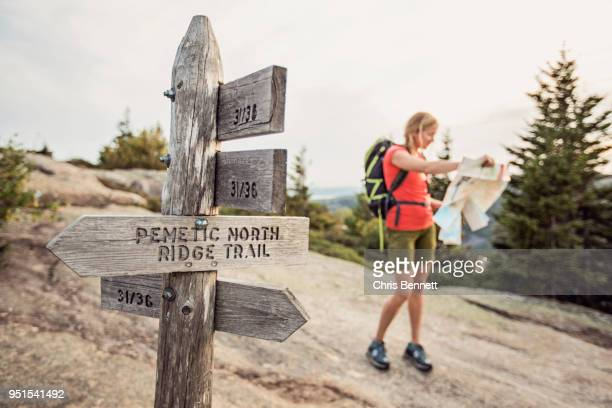 Female hiker looking at map near trail post, Acadia National Park, Maine, USA