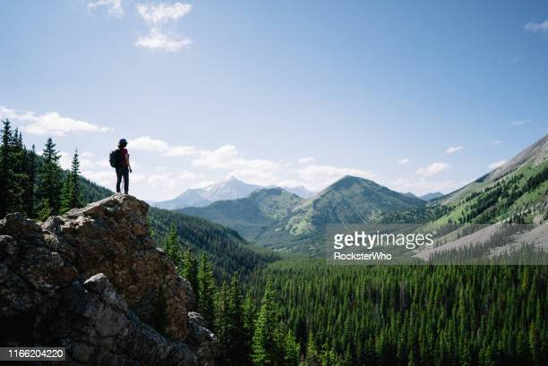 female hiker on an adventure stands on a platform on a mountain looking out - top foto e immagini stock