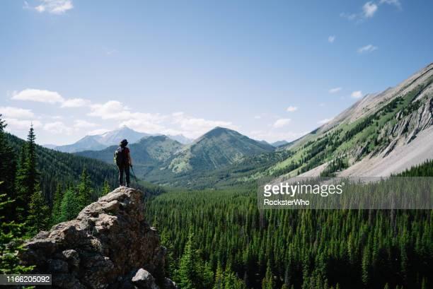 vrouwelijke wandelaar op een avontuur staat op een platform op een berg uitkijkend - bovenkleding stockfoto's en -beelden