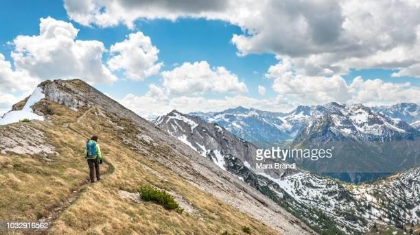 Female hiker on hiking trail, crossing from the Seekarspitz to the Seebergspitz, Tyrol, Austria