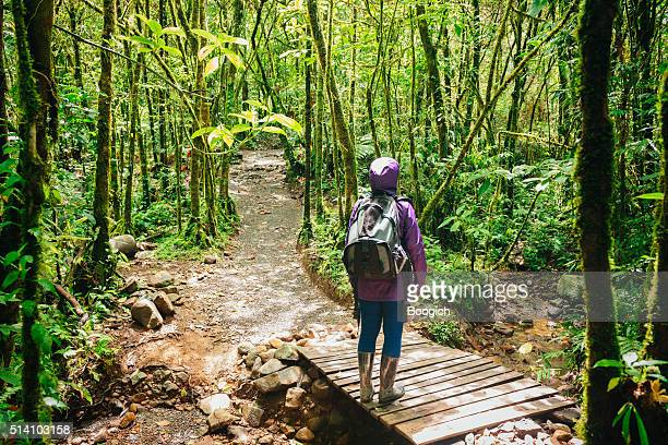 Female Hiker Stops to Look Up Costa Rica Rainforest Trees