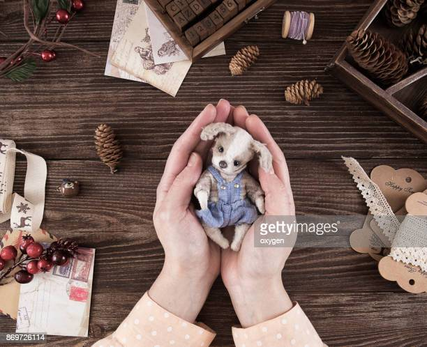 Female holding small toy dog on dark wooden table