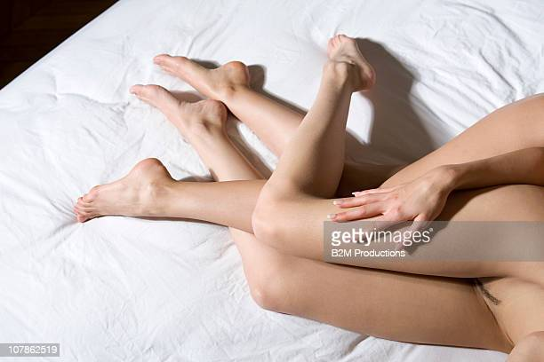 Female homosexual couple doing sexual activity