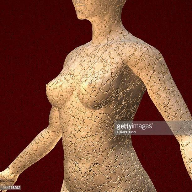 female human torso constructed from clay - verleidelijke vrouw stockfoto's en -beelden
