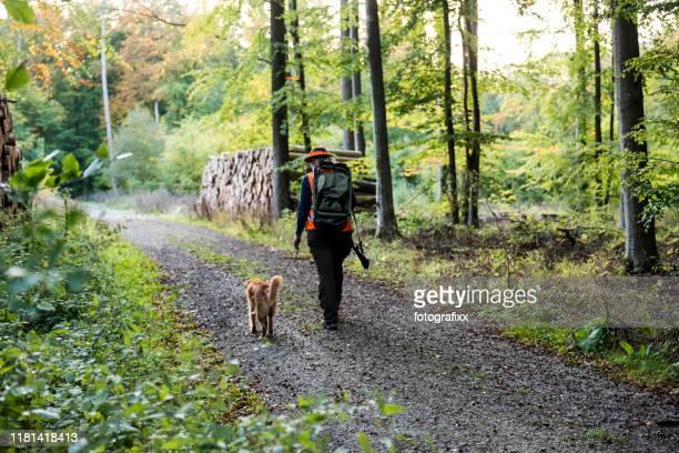jägerin und ihr hund spazieren im herbst durch den wald - jagd stock-fotos und bilder