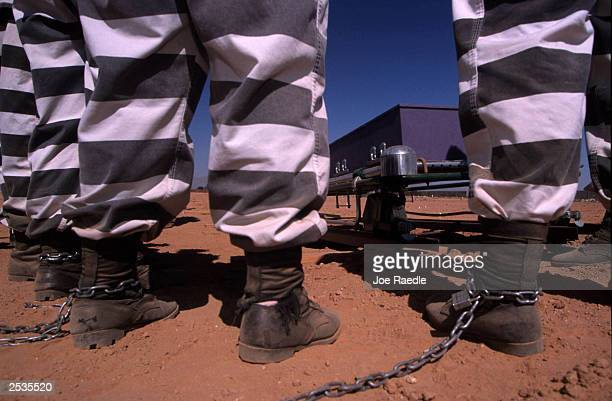 Female jail inmates are chained together as they bury cadavers at Maricopa County's pauper's graveyard in Phoenix Arizona May 17 2000 Maricopa County...