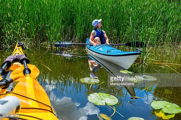 female kayaker appreciating nature - murray mccomb stock pictures, royalty-free photos & images
