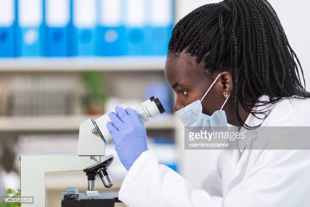 female laboratory worker using microscope - infectious disease stock pictures, royalty-free photos & images