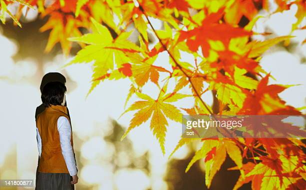 Female looking at red autumn leaves