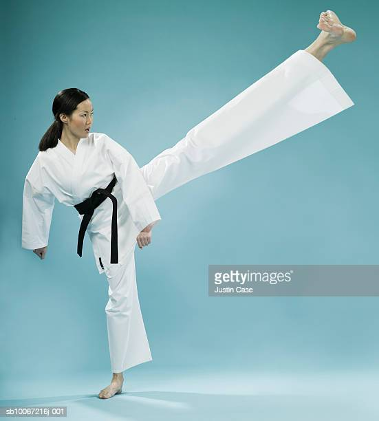Female martial art fighter with long leg (Digital Composite)
