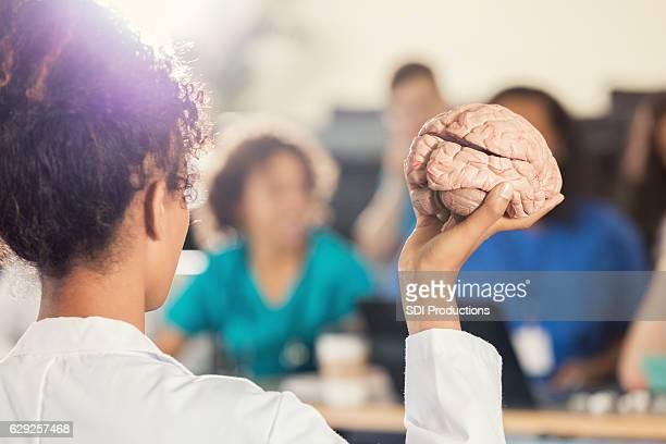 Female medical school professor teaches about the human brain