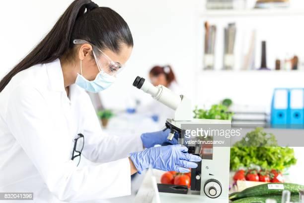 microbiologista feminina usando microscópio no laboratório - vegetais - fotografias e filmes do acervo