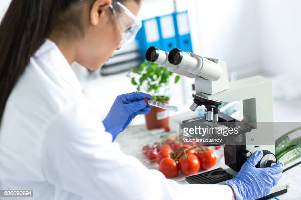 female microbiologist using microscope in laboratoty - comida e bebida imagens e fotografias de stock