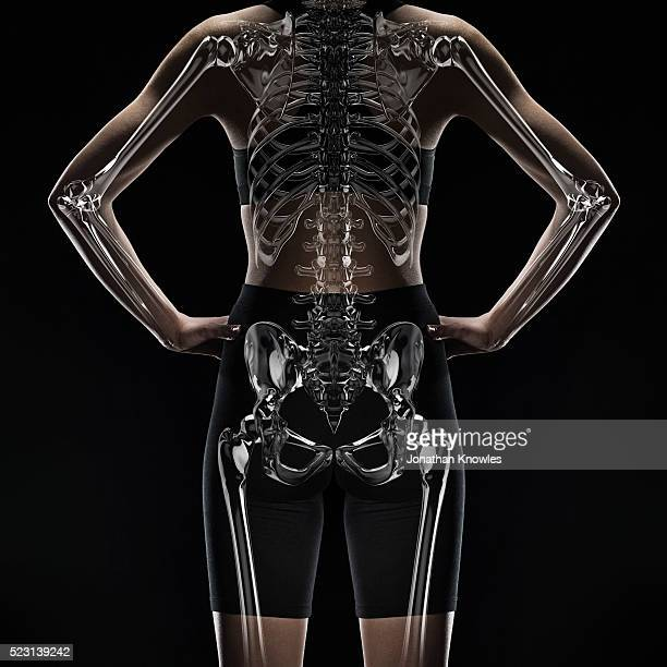 female mid section with layer of x-ray scan, hands on hips - partie inférieure photos et images de collection