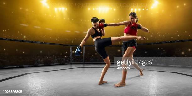 female mma fighters in professional boxing ring - mixed martial arts stock pictures, royalty-free photos & images