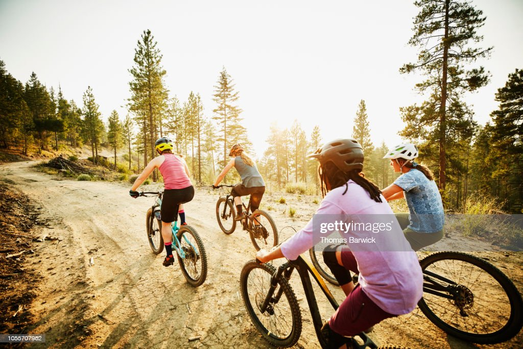 Female mountain bikers riding on forest road on summer evening : Stock Photo